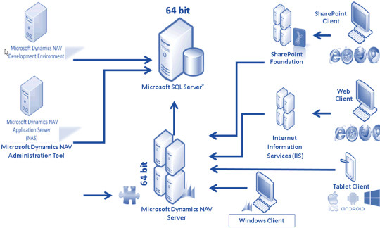 microsoft organisation