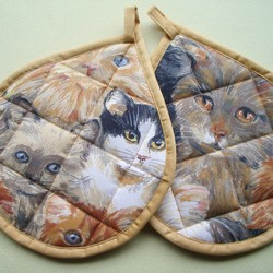 TL 11 Katzen
